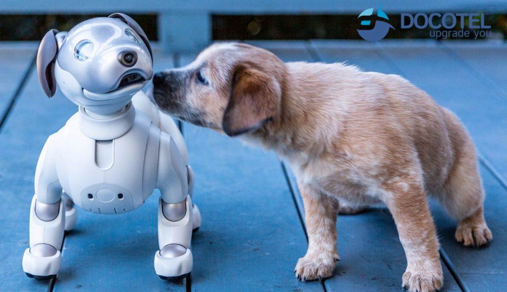 Aibo, Si Robot Anjing yang Lucu dan Pintar 2